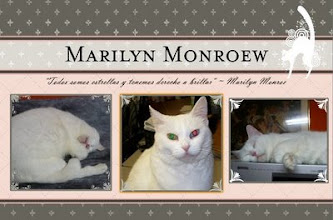 Photo: Marilyn Monroew-2009