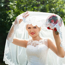 Wedding photographer Aleksandra Pastushenko (Aleksa24). Photo of 10.12.2016