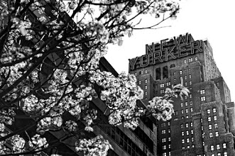 Photo: NEW YORKER It's a little weird now being back home and not shooting all day out on the streets. I loved being in NYC. I wouldn't want to live there, but it would be really cool to rent a room for a month there to really take it all in. I wonder which would be the best month to do that?