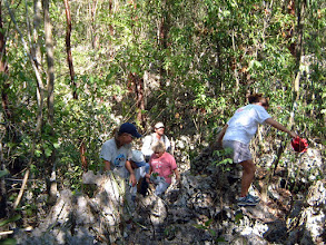 Photo: Ironwood Forest clamberers negotiating the pinnacle rock  (behind the University College of the Cayman Islands). April 23, 2004