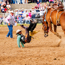 Falling off by Scott Thomas - Sports & Fitness Rodeo/Bull Riding ( horse, cowboy, bucking, rodeo, bronc )