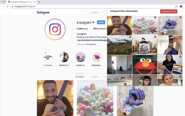 Instagram Mass Download Photos,Videos,Stories