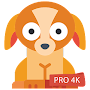 download Puppy Wallpapers 4K PRO Puppy Backgrounds apk