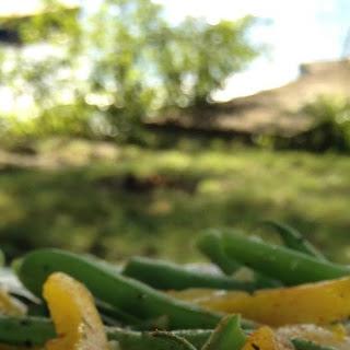 Sautéed Green Beans.