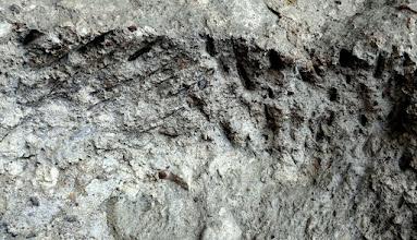Photo: Számos helyen látható a kézi fejtés bányászcsákány (laposabb) , ill. a bányászék (kúposabb) vésedelem nyoma.  (Macska-lyuk, Szentendre)