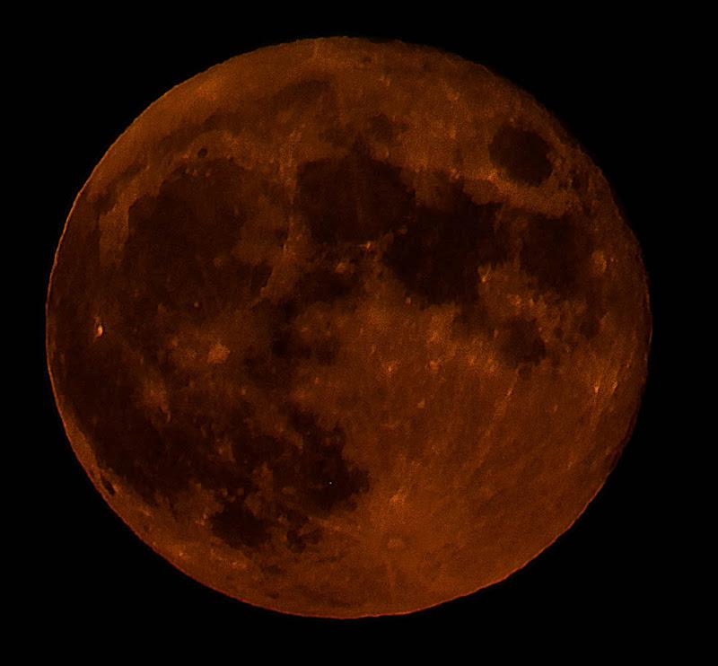 Luna Rossa di giuseppe accaputo