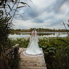 Wedding photographer Aleksandra Averina (saverina). Photo of 20.10.2016