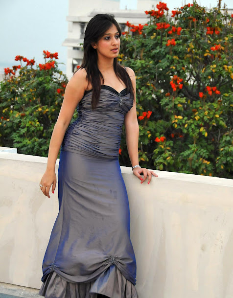Raai Laxmi in sexy gown, Raai Laxmi hot photos, Raai Laxmi spicy pics, Raai Laxmi masala photos