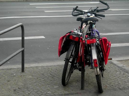 Tempo di bici di bee_330