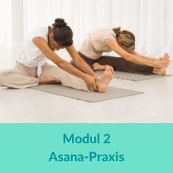 Vinyasa Yoga Asanas