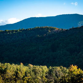 Great Smoky Mountains by Mary Phelps - Landscapes Mountains & Hills ( mountain, fall, tennessee, smokies, canon )