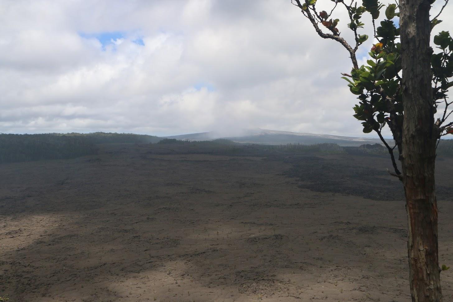 Le cratère du Napau - au loin, le Pu'u O'o