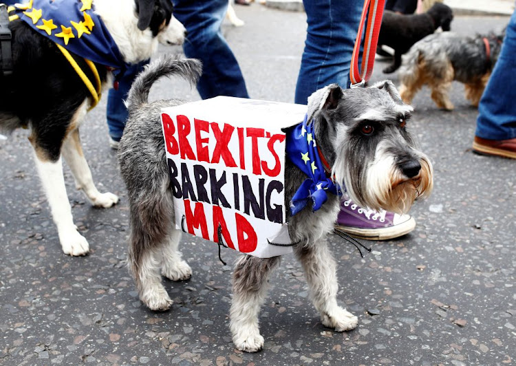 "Anti-Brexit protesters and their dogs joined a march called 'Wooferendum"" in London on October 7 2018."