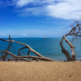 The Beach.  by Daniel Wheeler - Landscapes Waterscapes ( holiday, water, vacation, waves, ocean, beach, boat )