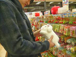 Photo: 露骨な小動物を愛せるキャラアピール