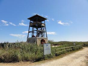 Photo: Observation tower at Bassa de l'Alfacada, Delta de l'Ebre