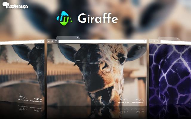 Giraffes Wallpapers New Tab
