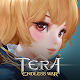 Download TERA: Endless War For PC Windows and Mac