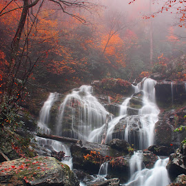 by Avishek Bhattacharya - Landscapes Waterscapes ( land of waterfalls, foliage, north carolina )