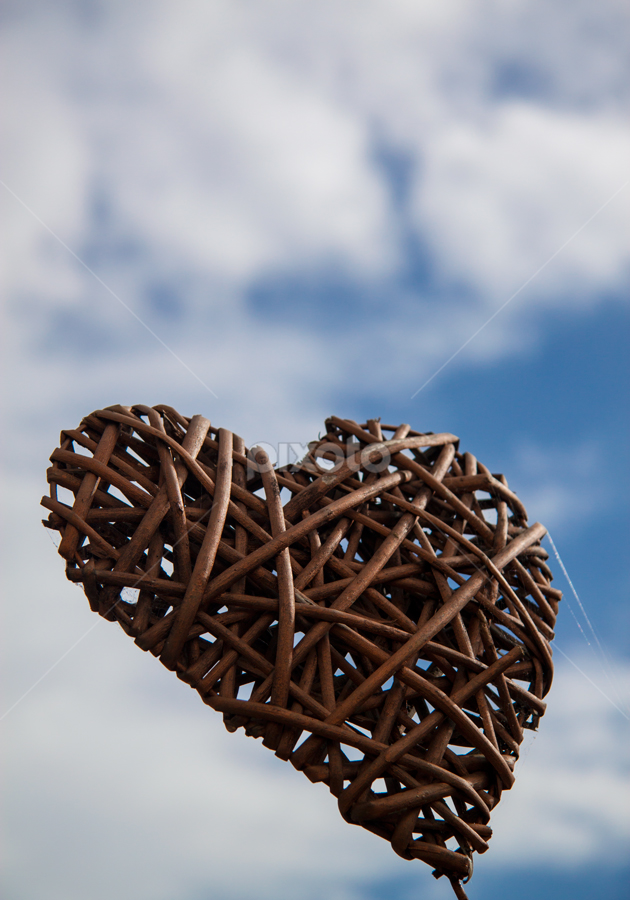 wooden heart by Cornel Robinson - Artistic Objects Other Objects ( heart, sky, wood )