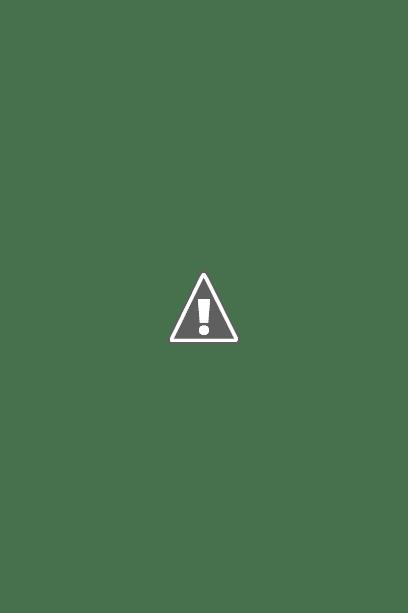SHARP Healsio Automatic Cookware