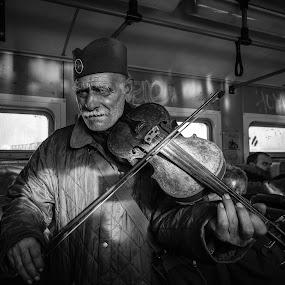 by Darijan Mihajlovic - People Musicians & Entertainers ( street portrait, b&w, violin, balkan, belgrade,  )