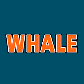 The Whale 99.1 FM - This Is Classic Rock (WAAL)