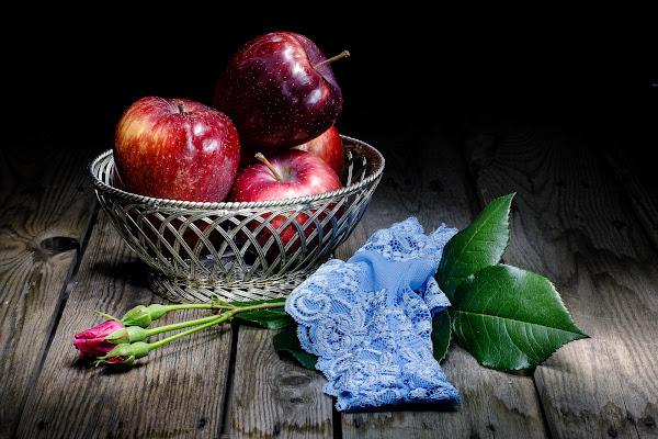 Non mangerete il frutto dell'albero proibito di Sergio Locatelli