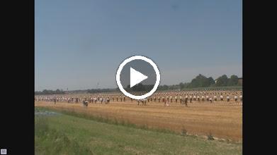 Video: Der Abschluss des Platzschiessens war ein gemeinsamer Salut