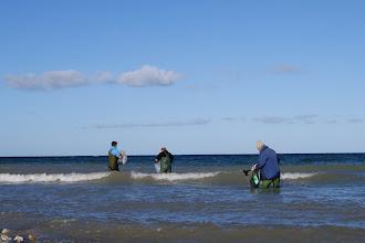 Photo: Michael, Kurt og Frode gik modigt til værks. Det gjorde Jan forøvrigt også. Han gik flere hundrede meter længere nordpå med bølgerne op til over knæet. Skidt med ikke at kunne se tangen så tydeligt, når man kan mærke med sine fødder hvor det er :-)