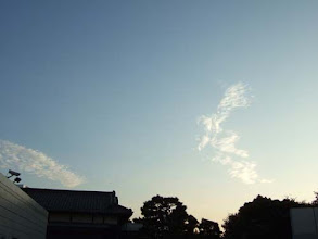 Photo: (2008/09)