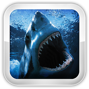 Shark Games for PC and MAC