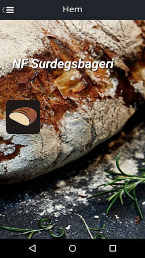 NF Surdegsbageri