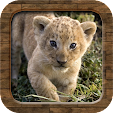 Animal Soun.. file APK for Gaming PC/PS3/PS4 Smart TV