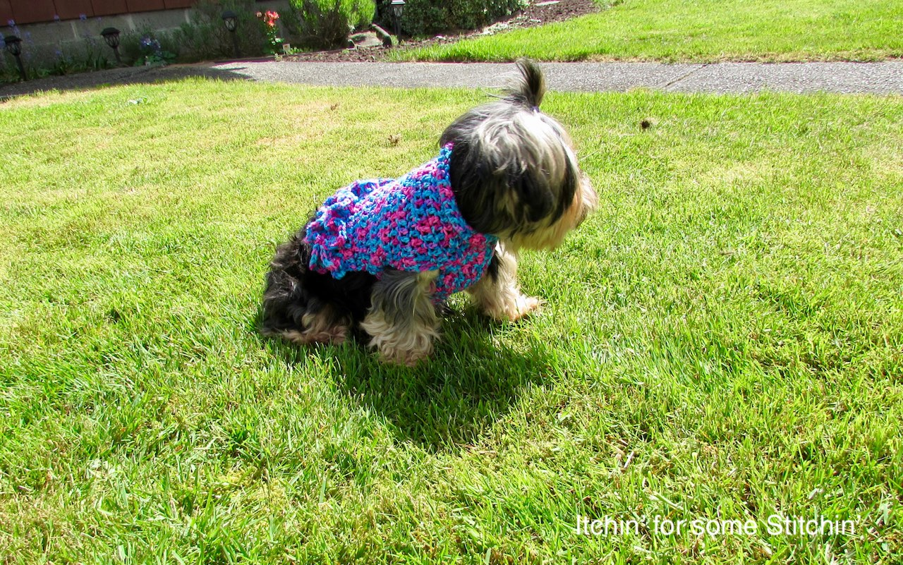 Small Dog Coat with Ruffles Pattern by www.itchinforsomestitchin.com