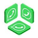 Pincall Messenger icon