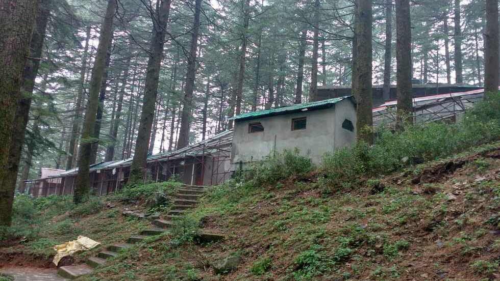 C:\Users\rj\Downloads\Dhamma-Sikhara,-Mcleodganj,-Himachal-Pradesh.jpg