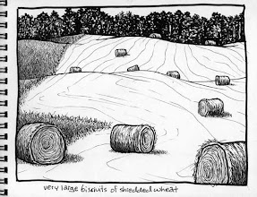 Photo: Hay bales, Chautauqua County/Western New York (pen & ink sketch)