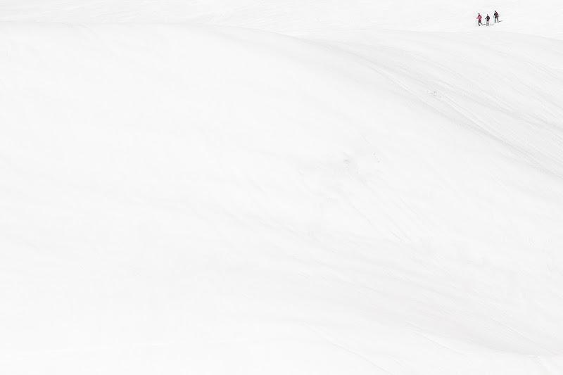 Questioni di prospettiva di donatella colombo