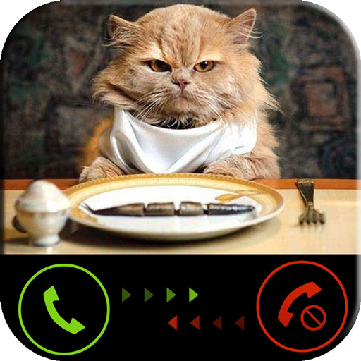 Phone call from cat