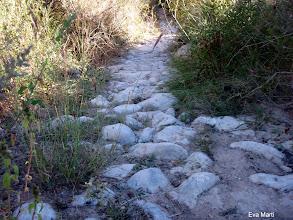 Photo: Fen camí....