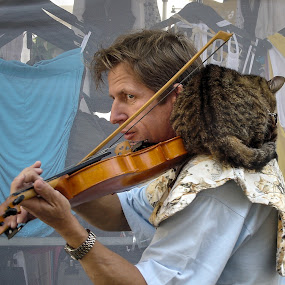 At a market in Provence, France by Keld Helbig Hansen - People Musicians & Entertainers