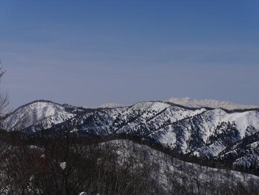 左が流葉山