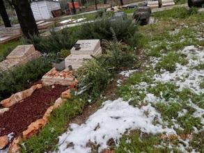 Photo: שלג בבית הקברות. צילמה דבורה בט