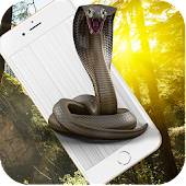 Cobra Snake attack on Phone Prank