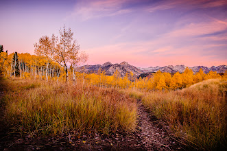 Photo: What's happening in Fall in Utah?  Yep many have heard but most haven't because I plan on doing the written announcement tomorrow. So stay tuned.  The Picture This is another enticing picture of what the canyon just 8 miles from my house looks like. Early morning. I love love love aspen trees. Sorry in advance that sRGB and your monitor are unable to show just how amazing these yellows are  VOLUNTEERS AND OTHER WORKERS The +Photography Decathlon is such a big event it's taken a while to create and now it's time to put a TEAM together to make it a reality. We have many months til October... but I want to get it rolling.  So if you want to be considered for the team let me know. Self-motivated-ness is very appealing.