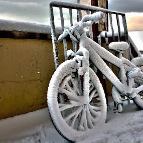 Frozen bike by Frodi Brinks - Artistic Objects Other Objects