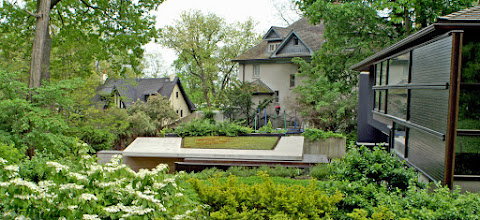 Photo: Flowering shrubs soften the amazing architecture of this home in an old neighbourhood of Toronto. We even have experts in our circle of colleagues who can do green roofing!
