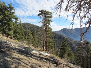 Photo: View northeast from Copter Ridge toward Throop Peak (left) and Mt. Burnham