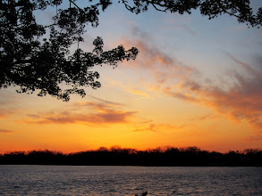 Photo: Pear tree blossoms framing a beautiful sunset at Eastwood Lake in Dayton, Ohio.